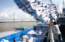 VFA kiến nghị ưu tiên thông quan xuất khẩu gạo đã tập kết tại cảng