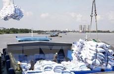 Phó Thủ tướng yêu cầu báo cáo về việc đăng ký mở tờ khai xuất khẩu gạo