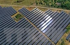Thủ tướng chỉ đạo về vấn đề điện mặt trời, thủy sản và chống hạn mặn