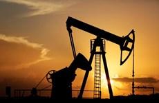 OPEC+ cắt giảm sản lượng, giá dầu châu Á tăng trong phiên 23/4