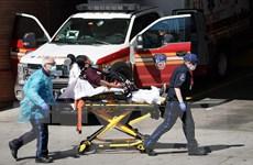 Cập nhật tình hình dịch sáng 25/4: Số ca tử vong lên gần 200.000 người