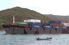 Bình Định: Tàu hàng đâm chìm tàu cá phải bồi thường 450 triệu đồng
