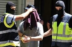 Tây Ban Nha bắt giữ đối tượng ủng hộ IS có kế hoạch khủng bố Barcelona