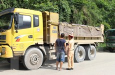 Tạm giữ 9 xe tải chở gấp đôi tải trọng cho phép, lái xe dùng ma túy