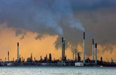 Singapore cắt giảm hoạt động lọc hóa dầu do ảnh hưởng của COVID-19