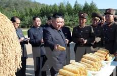 Triều Tiên kêu gọi tăng cường biện pháp xây dựng kinh tế vững mạnh