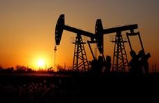 OPEC+ dự kiến tăng cường cắt giảm sản lượng và cam kết tuân thủ
