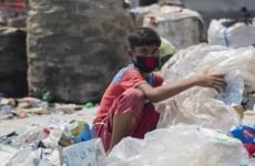 ILO cảnh báo nguy cơ gia tăng lao động trẻ em do đại dịch COVID-19