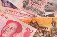 Campuchia, Trung Quốc chuẩn bị sử dụng đồng nội tệ trong giao dịch gạo