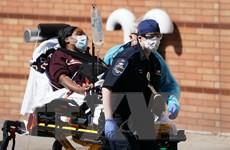 Dịch COVID-19: Tổng số ca tử vong trên toàn cầu vượt 450.000 người