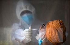 Số ca mắc COVID-19 tại Ấn Độ và Nam Phi tăng cao nhất trong ngày