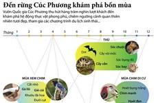 [Infographics] Đến Vườn quốc gia Cúc Phương khám phá bốn mùa