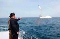 KIDA: Triều Tiên có khả năng sẽ thử tên lửa đạn đạo phóng từ tàu ngầm