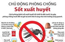 [Infographics] Chủ động phòng chống bệnh sốt xuất huyết