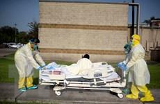 WHO tin tưởng khả năng ứng phó dịch COVID-19 của Mỹ, Brazil và Ấn Độ