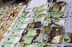 Hàn Quốc: Hơn 1 tỷ USD bị hư hại do người dân tự ý khử trùng tiền mặt
