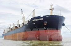 Thực hiện phòng dịch đối với toàn bộ thuyền viên và tàu Amoy Dream
