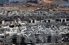 Giới chức Israel cảnh báo về mức độ an toàn các kho hóa chất ở Haifa