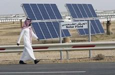 Nhật Bản ký thỏa thuận xây nhà máy điện Mặt Trời lớn đầu tiên ở Qatar