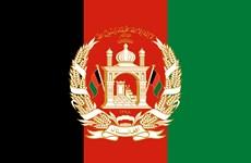 Tổng Bí thư, Chủ tịch nước gửi điện mừng Quốc khánh Afghanistan