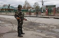 Ấn Độ bắt giữ một nghi phạm IS âm mưu tấn công khủng bố tại New Delhi