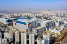 Samsung: Sản xuất không bị ảnh hưởng bởi các ca mắc ở nhà máy Hwaseong