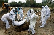 Dịch COVID-19: Số ca tử vong trên toàn cầu vượt 800.000 người