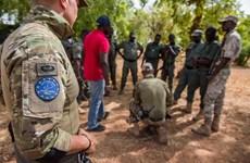 EU tạm thời đình chỉ sứ mệnh huấn luyện ở Mali sau đảo chính