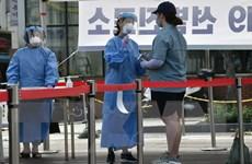 Dịch COVID-19: Hàn Quốc ghi nhận số ca nhiễm mới cao nhất từ tháng 3