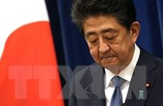 Cuộc đua vào ghế Thủ tướng Nhật Bản thay thế ông Abe đang nóng dần