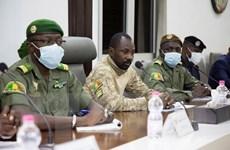 ECOWAS hối thúc Mali chỉ định người đứng đầu chính quyền chuyển tiếp