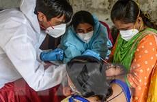 Tình hình dịch COVID-19 tối 12/9: Số tử vong vượt 920 nghìn người