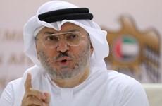 UAE: Bình thường hóa quan hệ với Israel sẽ có lợi cho khu vực