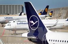 """Hàng không châu Âu kêu gọi chấm dứt biện pháp cách ly """"chắp vá"""""""