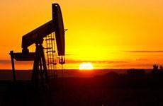 Số ca nhiễm mới tăng, giá dầu thế giới giảm hơn 2% trong tuần qua