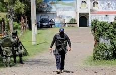 Xả súng kinh hoàng tại quán bar ở Mexico, 11 người thiệt mạng