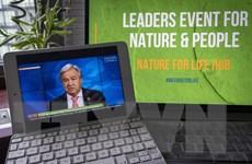 Lãnh đạo các nước cam kết chấm dứt tình trạng mất đa dạng sinh học