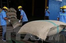 Việt Nam-Algeria tăng cường giao thương trực tuyến trong thời dịch