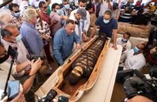 Ai Cập phát hiện hàng chục quan tài chứa xác ướp hơn 2.500 năm tuổi