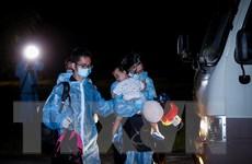 Dịch COVID -19: Đưa hơn 240 công dân Việt Nam từ Philippines về nước