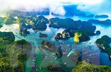 Bảo tồn biển Việt Nam: Thực trạng và những vấn đề cấp bách hiện nay