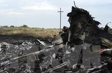 Vụ rơi máy bay MH17: Nga tuyên bố rút khỏi các cuộc tham vấn ba bên