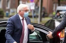 Tổng thống Đức tự cách ly do vệ sỹ dương tính với SARS-CoV-2