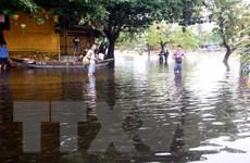 Quảng Nam tập trung triển khai công tác ứng phó với bão số 8