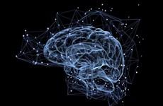 Hàn Quốc phát triển chương trình ứng dụng AI tầm soát suy giảm trí nhớ