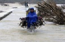 Quảng Ngãi: Nhiều nơi bị ngập sâu, giao thông chia cắt do mưa lũ