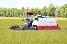 Viện Tầm nhìn châu Á đề xuất thành lập Hiệp hội lúa gạo khu vực ACMECS