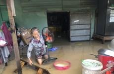Bình Định khẩn trương khắc phục ảnh hưởng bão số 12, ứng phó bão VAMCO