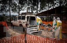 Cộng hòa Dân chủ Congo tuyên bố chấm dứt dịch Ebola ở miền Tây