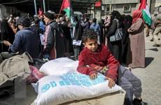 Lệnh phong tỏa của Israel gây thiệt hại cho Dải Gaza 16,7 tỷ USD